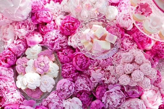 Пионовидные розы картинки 8